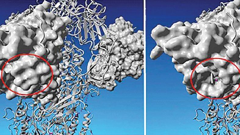 Britská mutace koronaviru se objevila na Slovensku už loni v listopadu