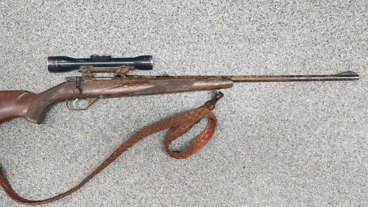 Policie už nepátrá po jelenu Puškinovi, který ukradl kulovnici. Zbraň se našla