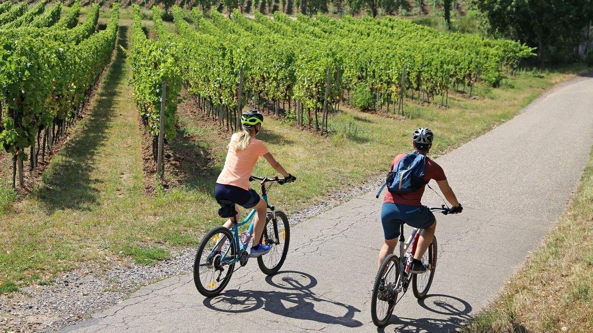 Po slováckých vinohradech pěšky, na kole i koloběžce