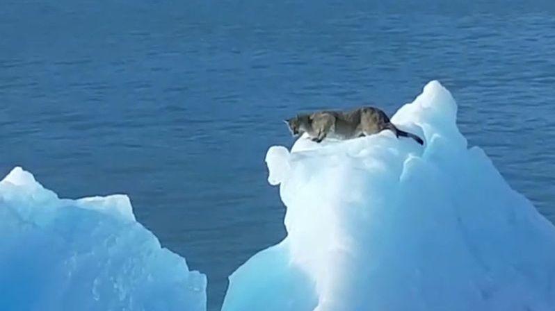Na turisty čekalo na ledovci v Argentině překvapení