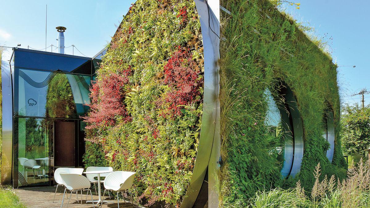 Zelené rostlinky střeše i fasádě sluší