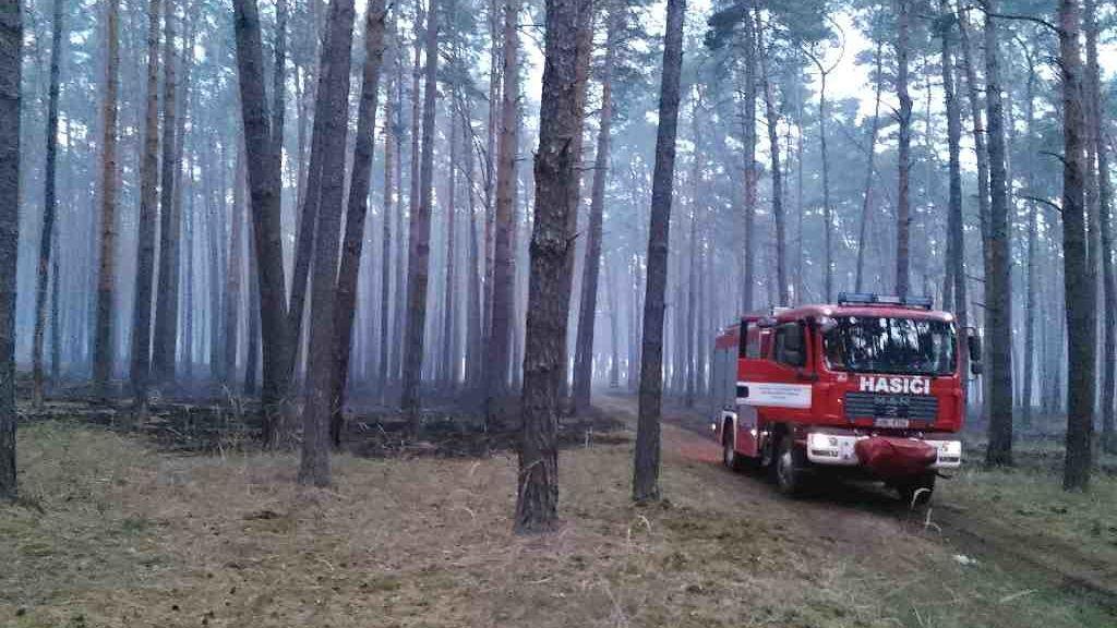 Vítr na Hodonínsku rozfoukal plameny do deseti hektarů lesa