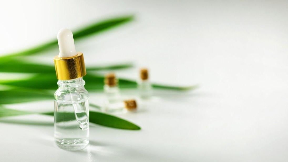 Tea tree olej pomáhá s hojením, v boji proti plísním, zánětům, lupům či akné