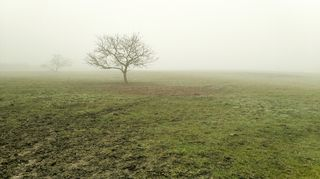 Mlhavého příkrovu se hned tak nezbavíme