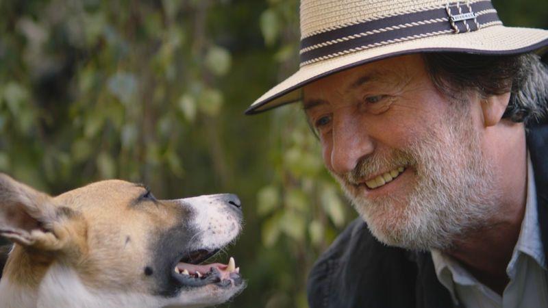 Marek Ztracený napsal píseň k filmu o psu Gumpovi. V klipu si zahrál s Bolkem Polívkou