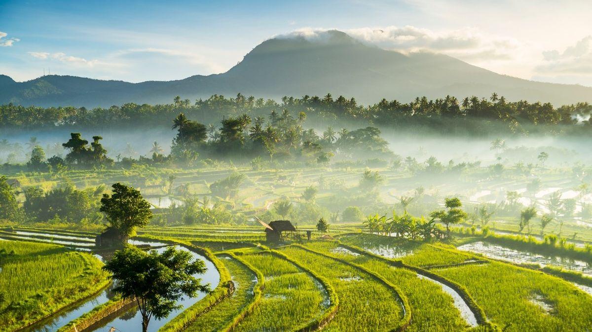 Londýn dokraloval. Nejpopulárnější destinací světa je nově Bali