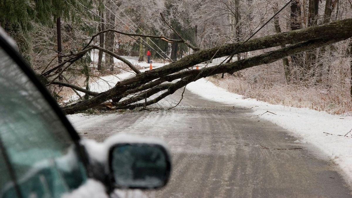 Na auto v Kalifornii spadl strom, úhybným manévrem si řidič zachránil život