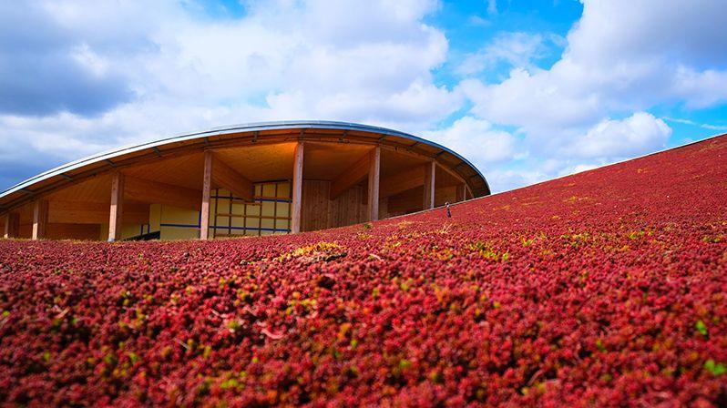 V Dánsku otevřeli pohádkově krásné muzeum Hanse Christiana Andersena