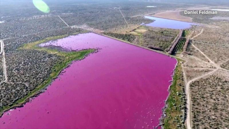 Dvě jezera v Argentině náhle zrůžověla