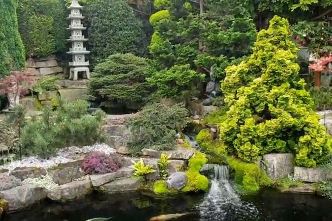 BEZ KOMENTÁŘE: Japonská zahrada vyšla v přepočtu na téměř 1,2 milionu korun